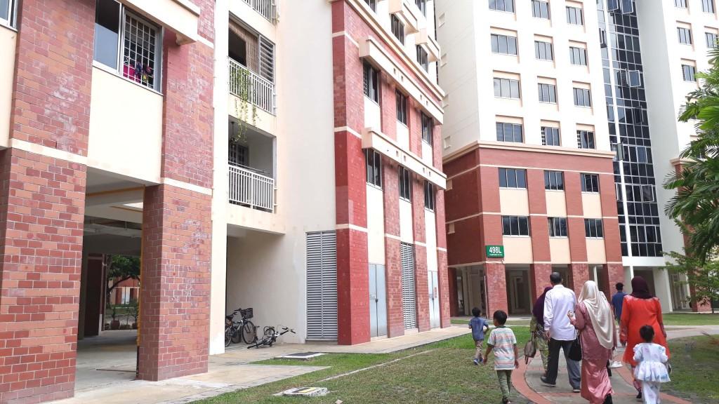 Homestay Near Tuas - Dillenia Homestay - http://www.homestaylegolandjohorbahru.com/blog